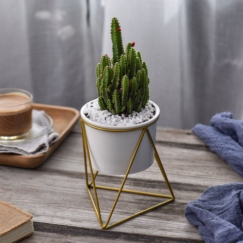 Ceramic Flower Pot with Iron Stand - Ellie J Shoppe
