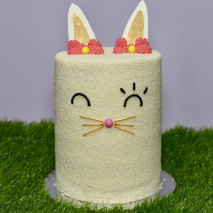 Hops the Bunny Cake