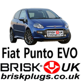 Fiat Punto Evo Replacement Parts Brisk Spark Plugs UK