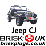 Jeep CJ Brisk Perfromance Spark plugs for AMC engine stroker power AMC 4.0 4.2 Tuning