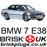 E38 728i 735i 740i 750i 760il bmw spark plugs replacement BRISK plugs UK US DE CZ