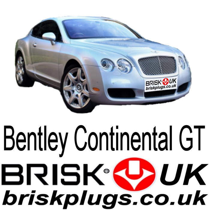 Bentley Continental GT GTC Brisk Performance Spark Plugs 6.0 03-17