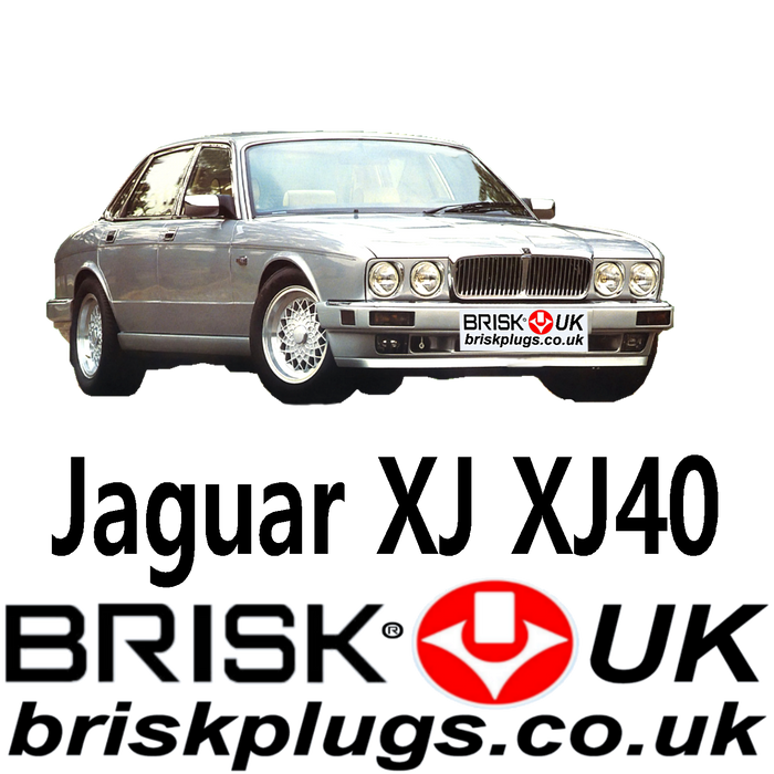 Jaguar XJ6 XJ12 Xj40 Performance Spark Plugs 2.9 3.2 3.6 4.0 6.0 84-94 Brisk UK