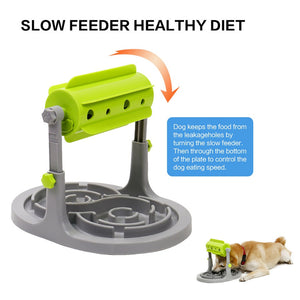 Healthy Diet Slow Feeders for Dog