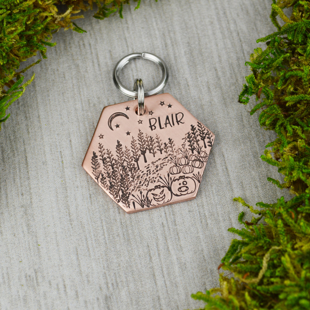 Path to the Pumpkin Patch Pet ID Tag