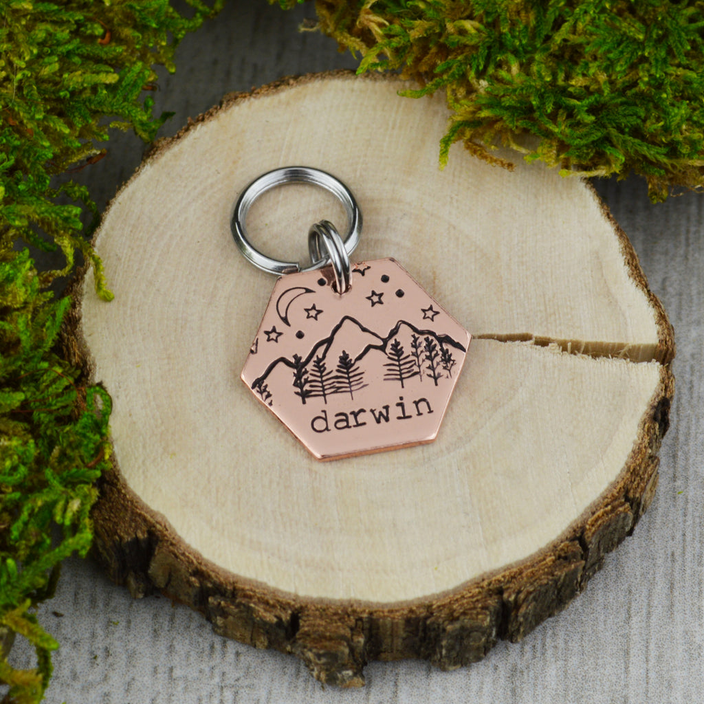 Moonlight on the Peaks Mini Pet ID Tag