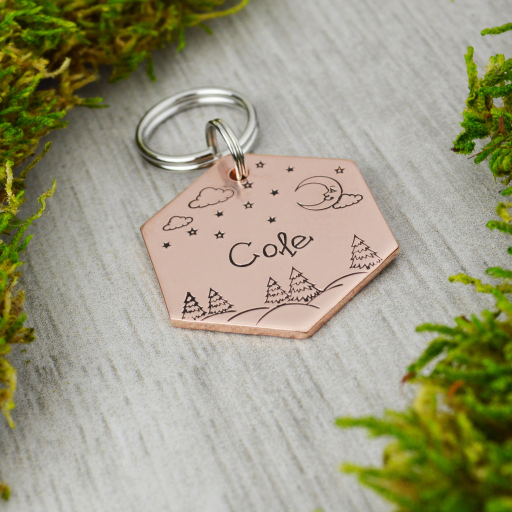 Winter Nights Pet ID Tag