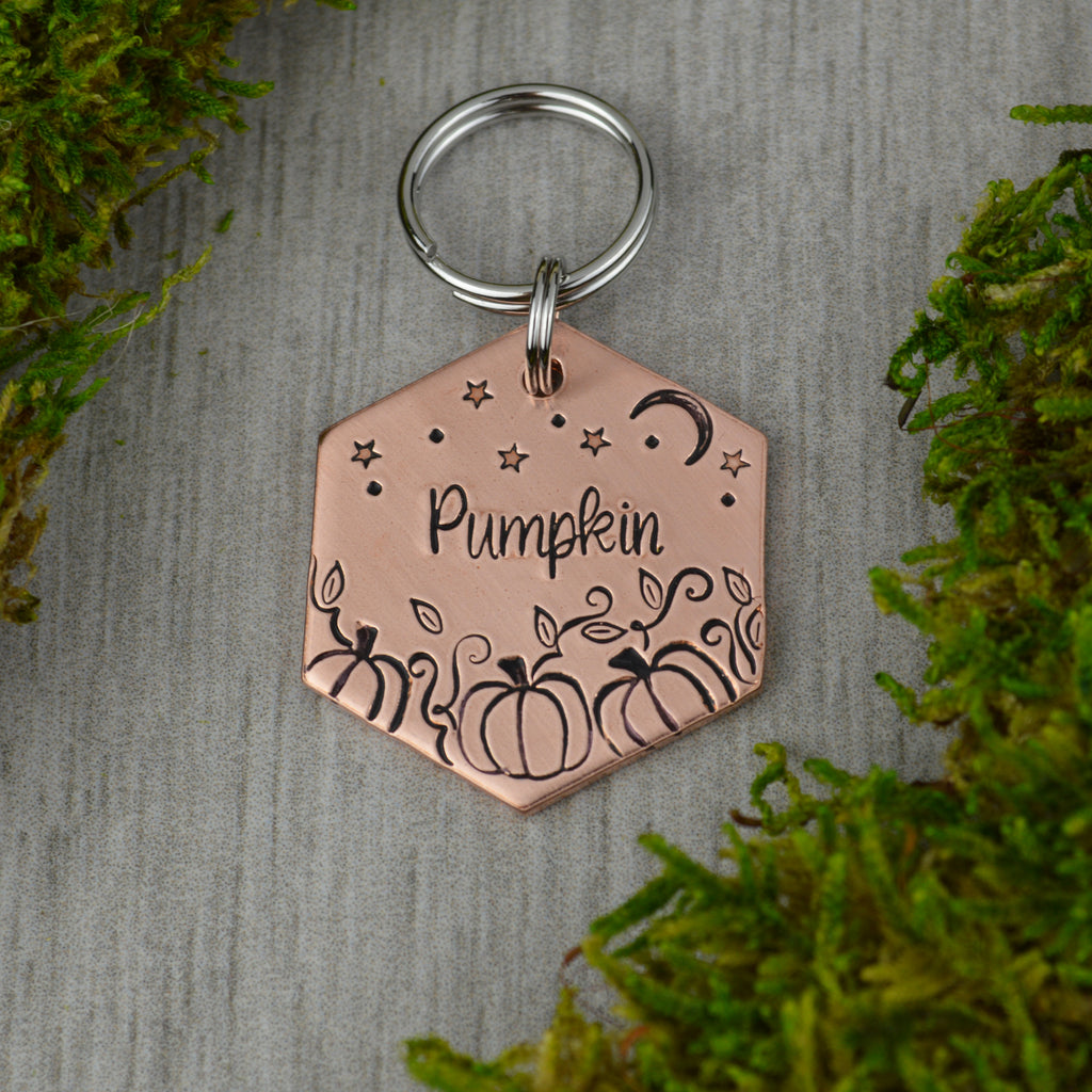 Pumpkin Patch  Pet ID Tag