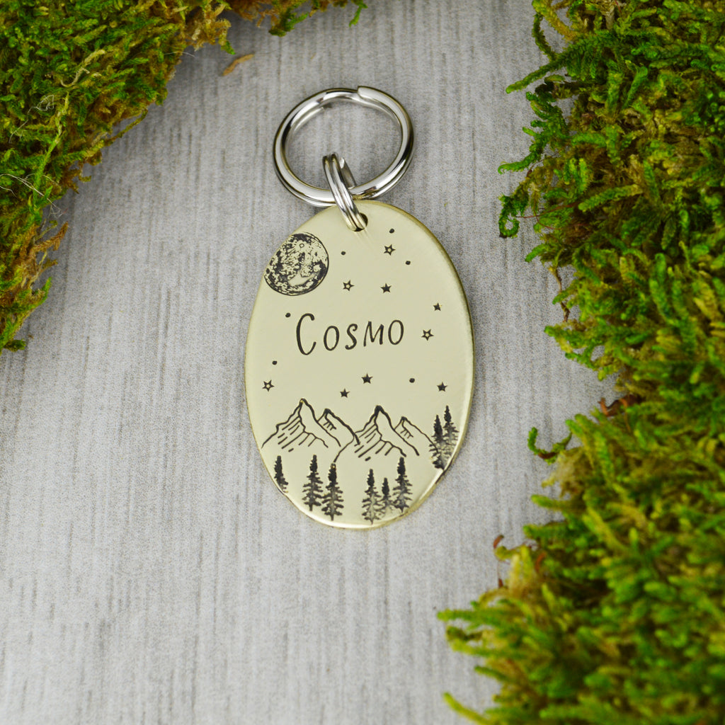Looking Up At The Cosmos Pet ID Tag