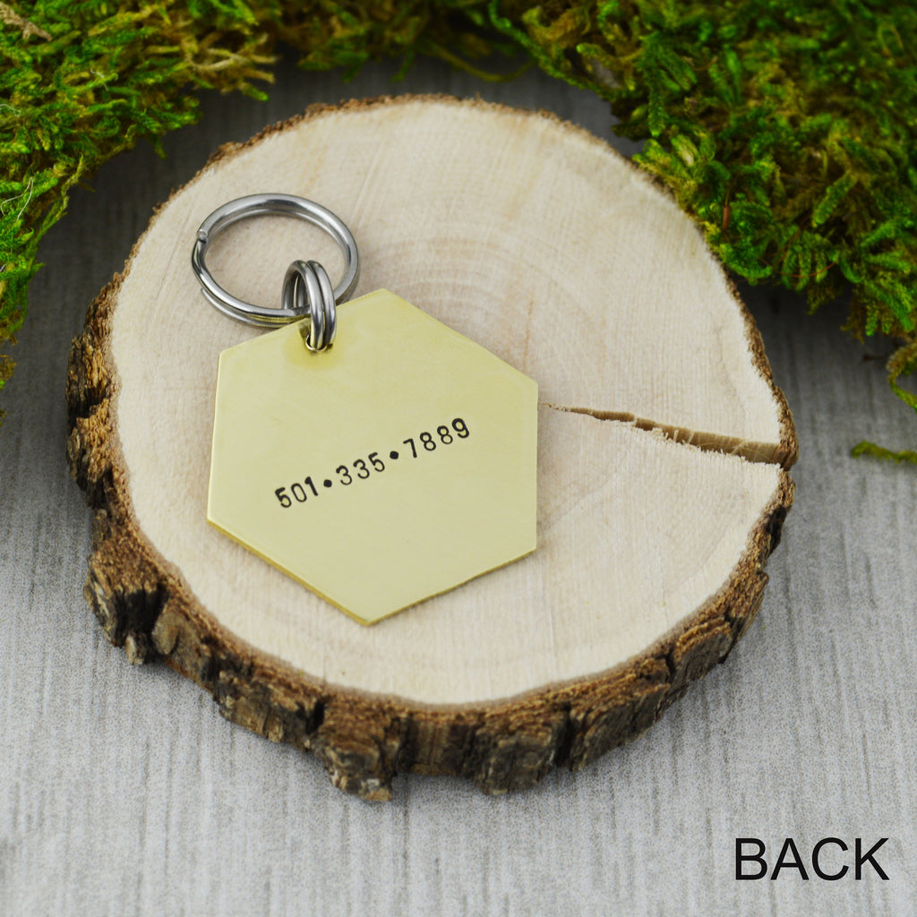 Follow The Spiders Pet ID Tag