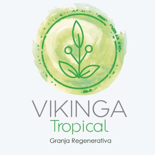 Vikinga Tropical - Pollo - Kit para caldo 500 g
