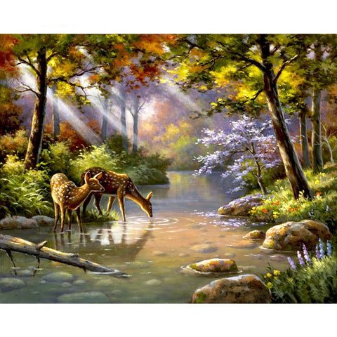 Deer Drinking In The River 40cm x 50cm