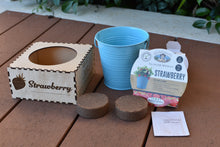 Load image into Gallery viewer, Pot Plant Kit (Strawberry) - Wilson-Made