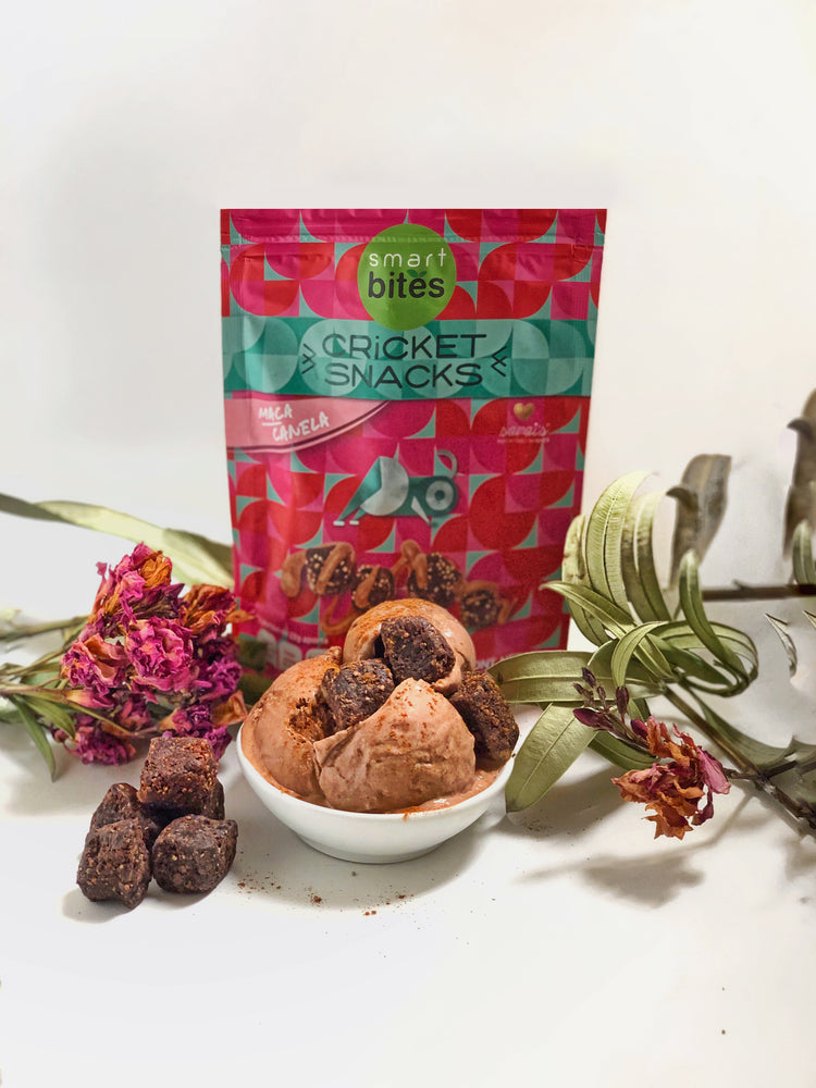 Smart Bites Cricket Snacks - Maca Canela