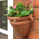 Terracotta Amphora Wall Pot