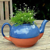 Large Glazed Teapot Planter