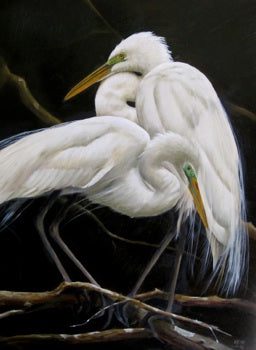 Egrets Ensemble