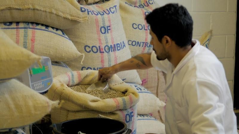 Producing quality Colombian coffee