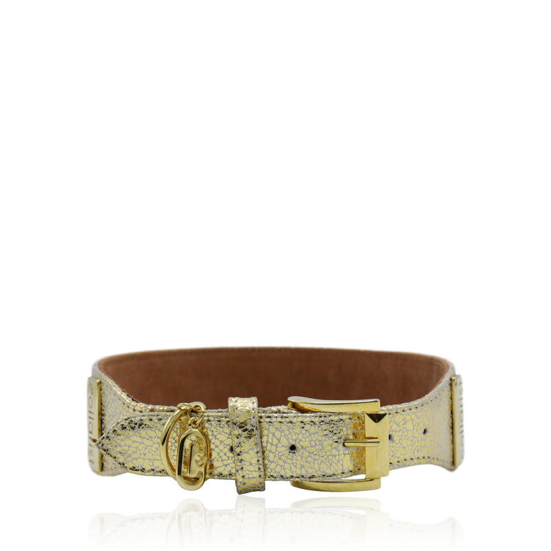 Gold and brown luxury leather collar