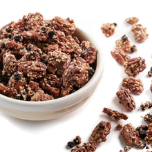 Wild Blueberry Ancient Grain Pecans 6 oz