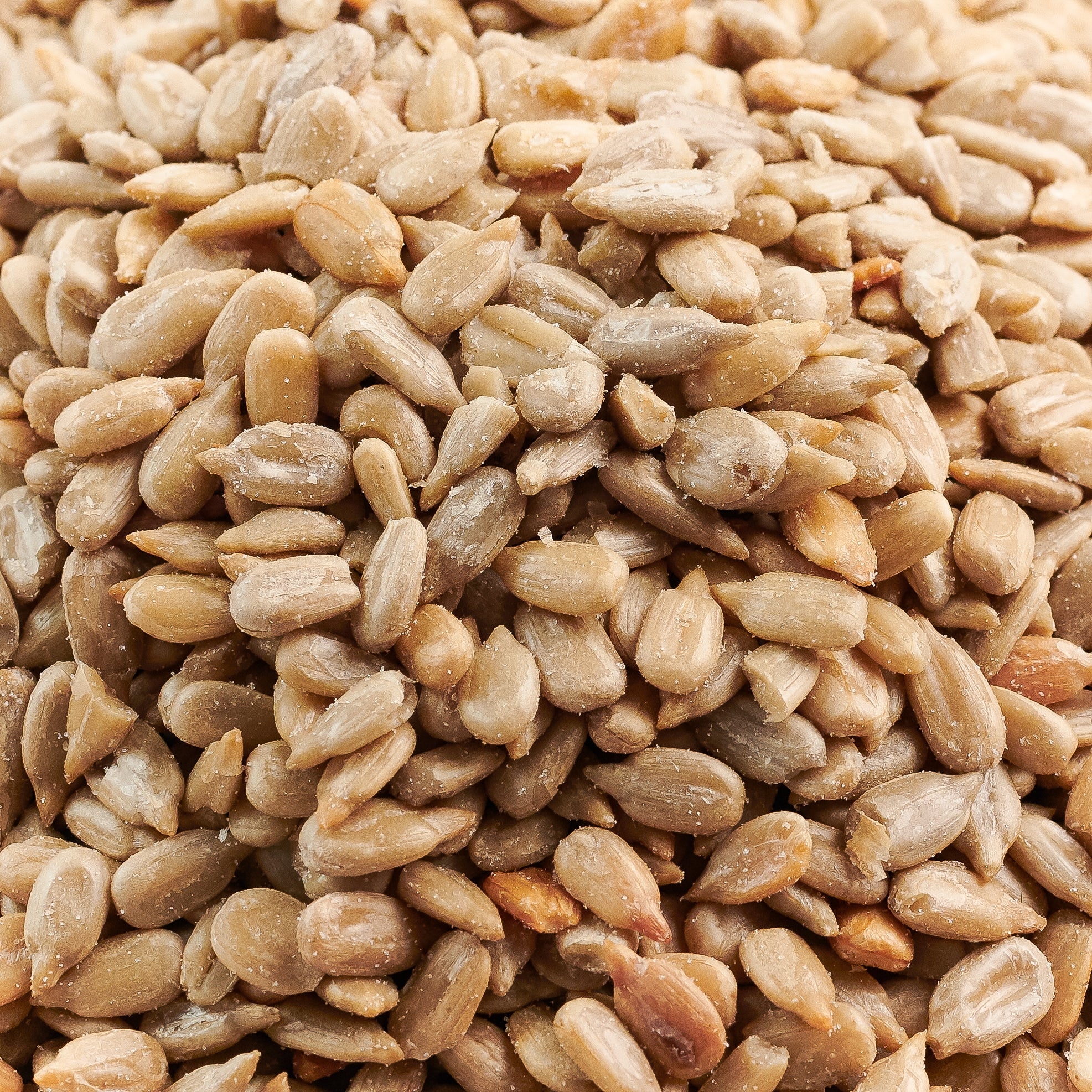 Roasted/Salted Sunflower Seed Meats - 25 Pound Bulk Case