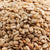 Salted Sunflower Kernels - 16 oz