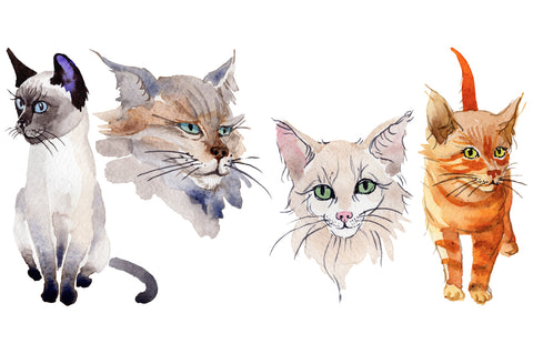 Watercolor Cat royalty free images