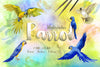 Watercolor Parrot royalty free images