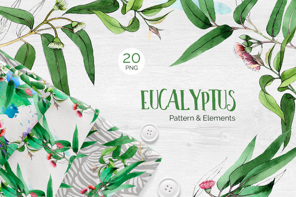 Eucalyptus branch Watercolor png