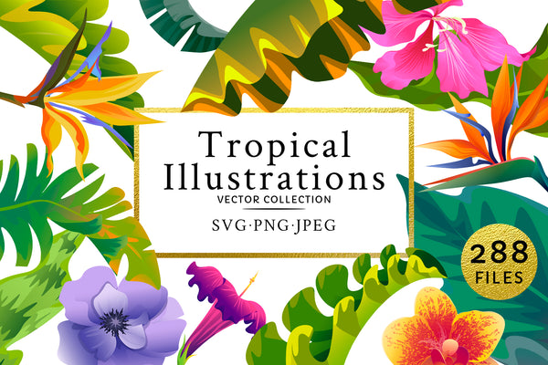 Flowers Tropical Illustration Pack Watercolor png