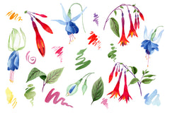 Fuchsia flower orange-red watercolor png