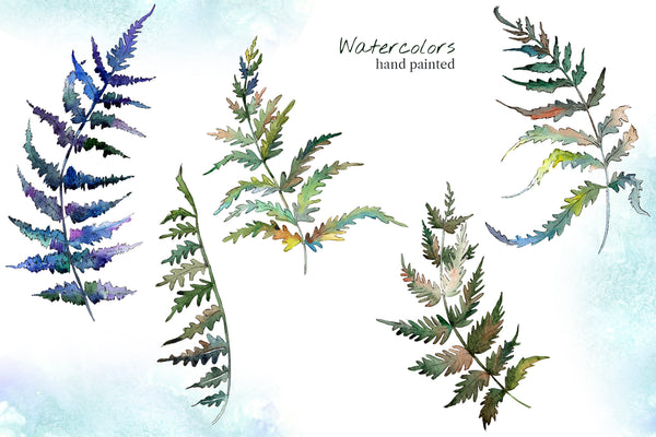 Fern leaf clipart watercolor png