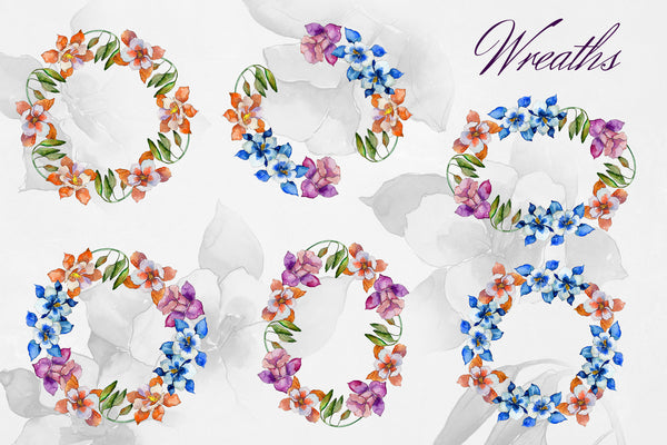 Aquilegia flowers velvet season watercolor png PNG