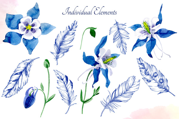 Watercolor flower Aquilegia blue png