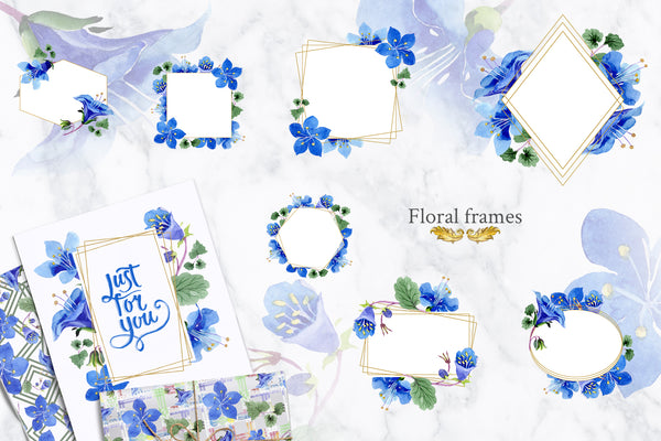 Phacelia or Bellflowers watercolor clipart blue png