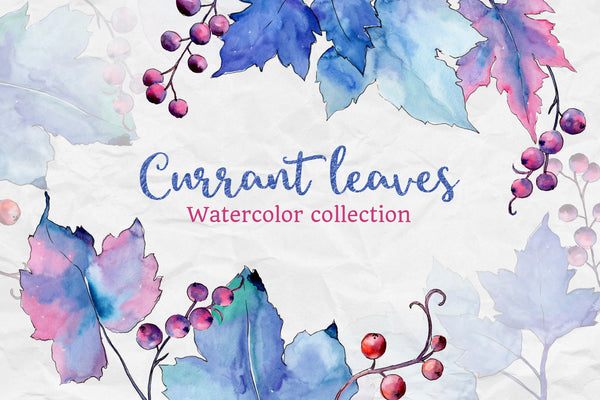 Blue watercolor currant leaf illustration png