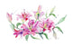 Bouquet of pink lilies PNG watercolor set
