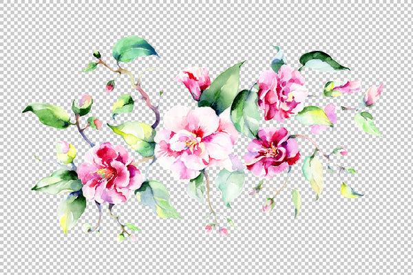 Bouquet pink roses PNG watercolor flowers set