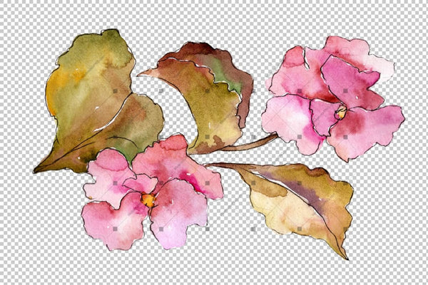 Tropical Pink Gardenia Png Watercolor Flower Set Flower