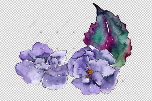 Watercolor Gardenia Wildflower Png Set Flower