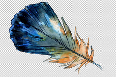 Magic feather vis acuarela png