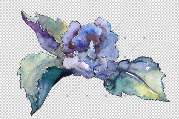 Pink And Blue Gardenia Flowers Png Watercolor Set Flower