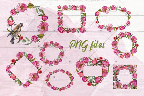 Cool Peonies Png Watercolor Flowers Set Digital