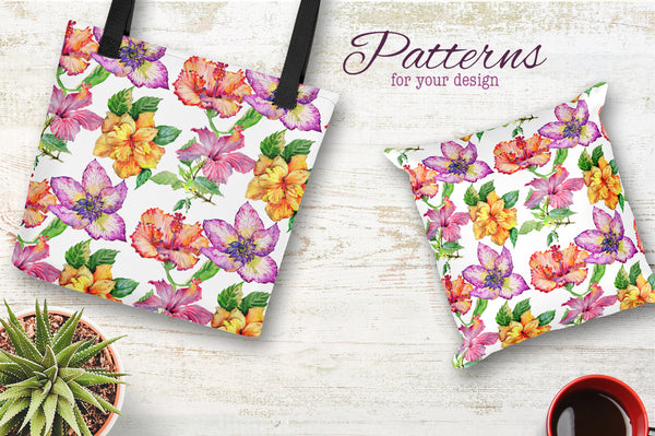 Hibiscus PNG watercolor flower set