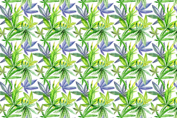 Cannabis watercolor PNG flower green  set