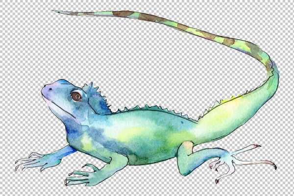 4 iguanas watercolor png Flower