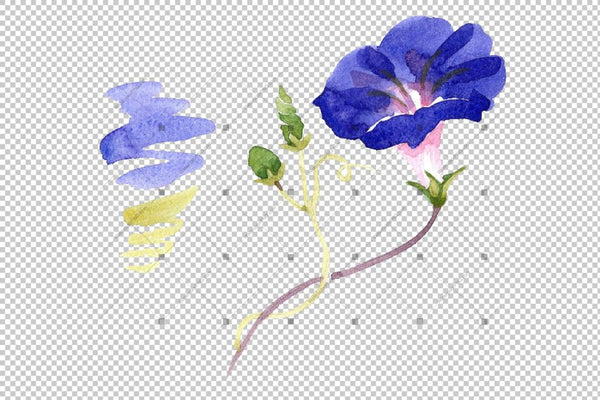 Wildflower Ipomoea Dark Blue Png Watercolor Set Flower