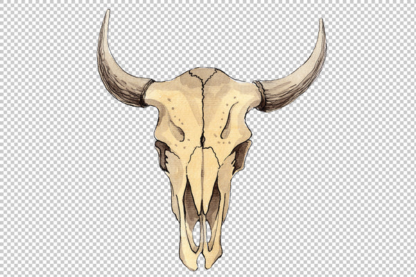 Cow skull watercolor png