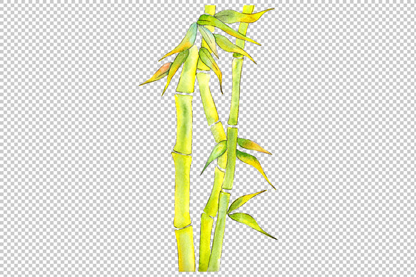 Bamboo watercolor product png