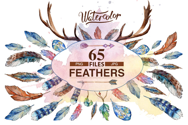Feather PNG watercolor bird set